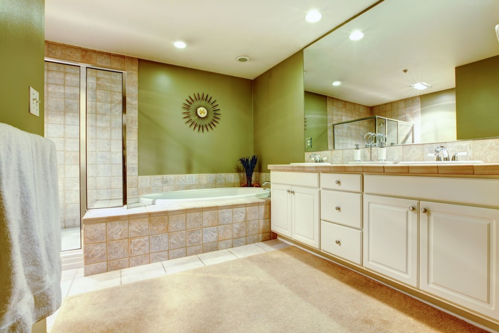 Bathroom Remodeling. Bathroom View
